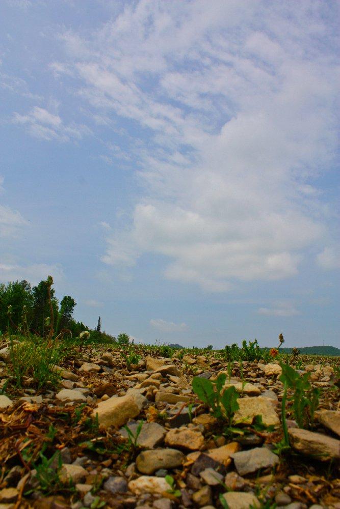 Landscape supply dallas ga 28 images marietta ga house for Landscape rock delivery near me