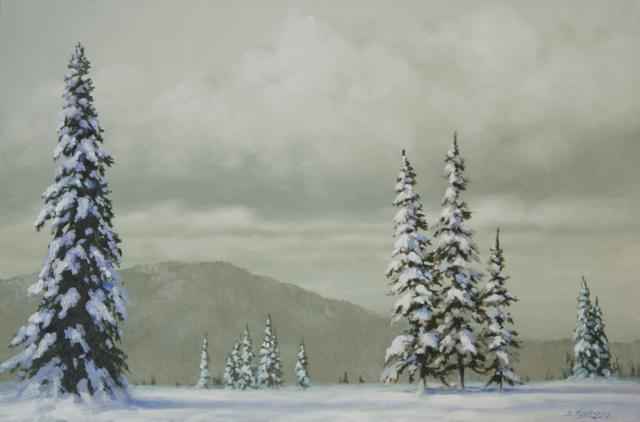 christmas trees madison ms