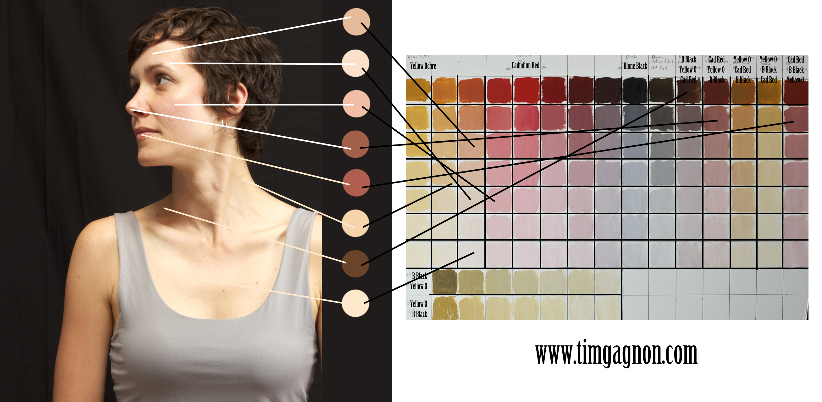 Digital Painting With A Traditional Look The Zorn Limited Palette Color Theory For Skin Tones You