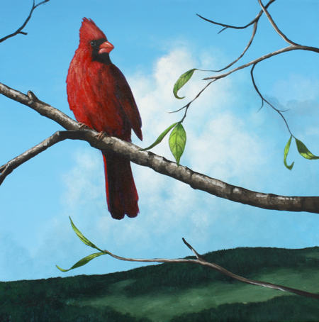 Cardinal Acrylic Painting Lesson Tim Gagnon Studio