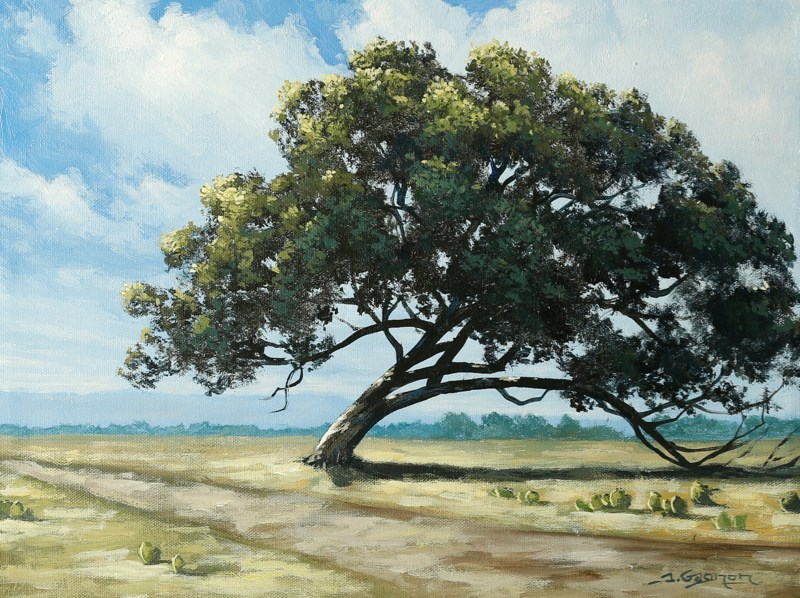 texas tree an acrylic painting lesson on dvd tim gagnon studio. Black Bedroom Furniture Sets. Home Design Ideas